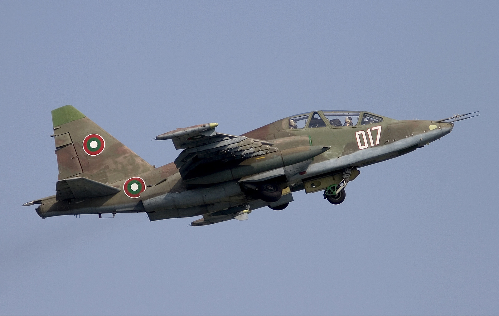 Bulgarian Air Force Sukhoi Su 25UBK Lofting